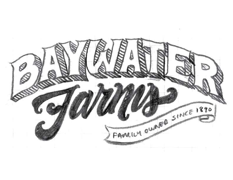 BaywaterFarms_LogoSketch_No3.png