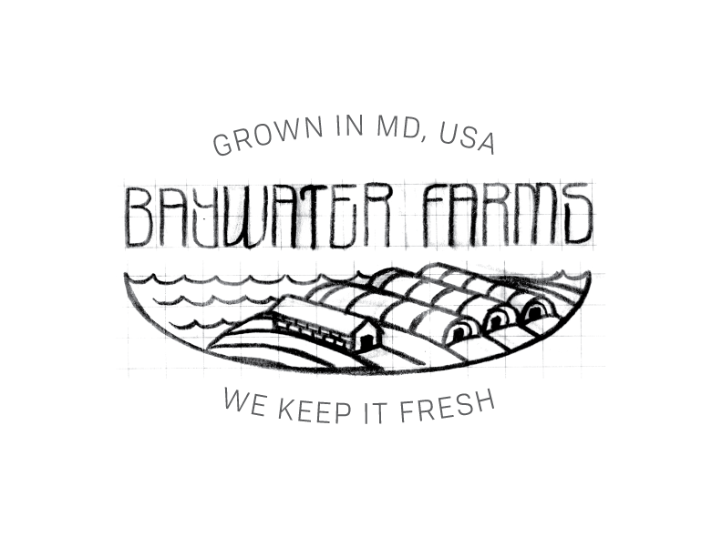 BaywaterFarms_LogoSketch_No7.png