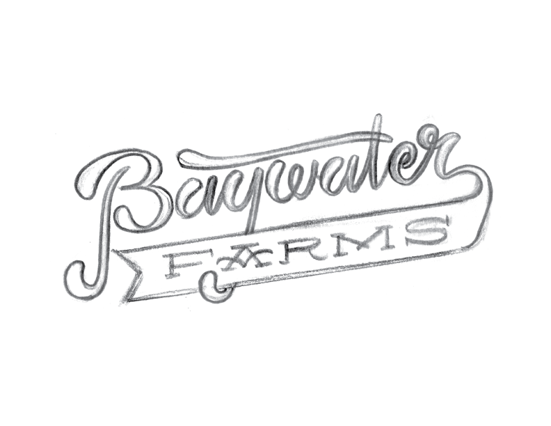 BaywaterFarms_LogoSketch_No10.png