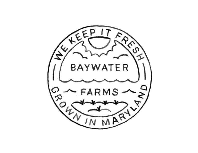 BaywaterFarms_LogoSketch_No13.png