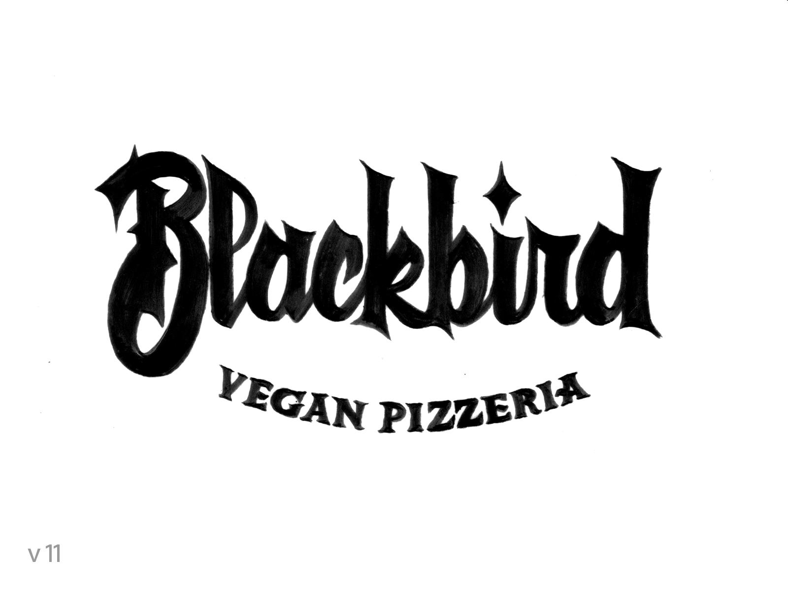 Blackbird_PencilArt_p15.png