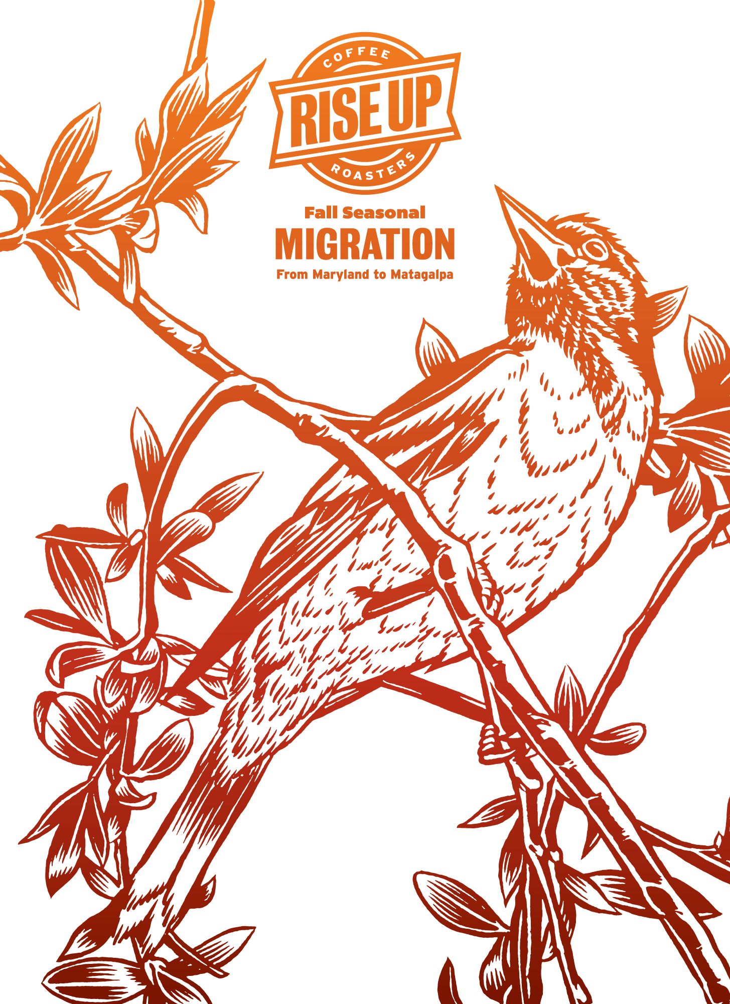 Poster Design, Illustration for Rise Up Coffee Roasters