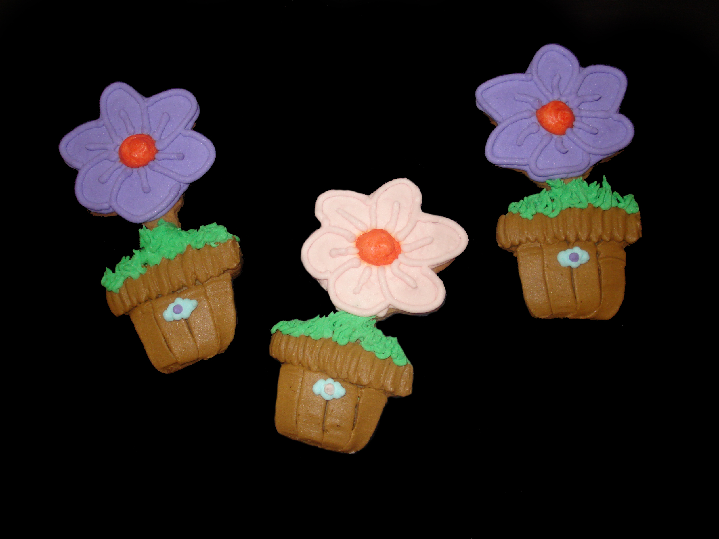 Cookie Flower Pots.jpg