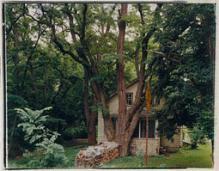Treehouse, Freese Road, Varna, New York, Rhea Garen, 1993