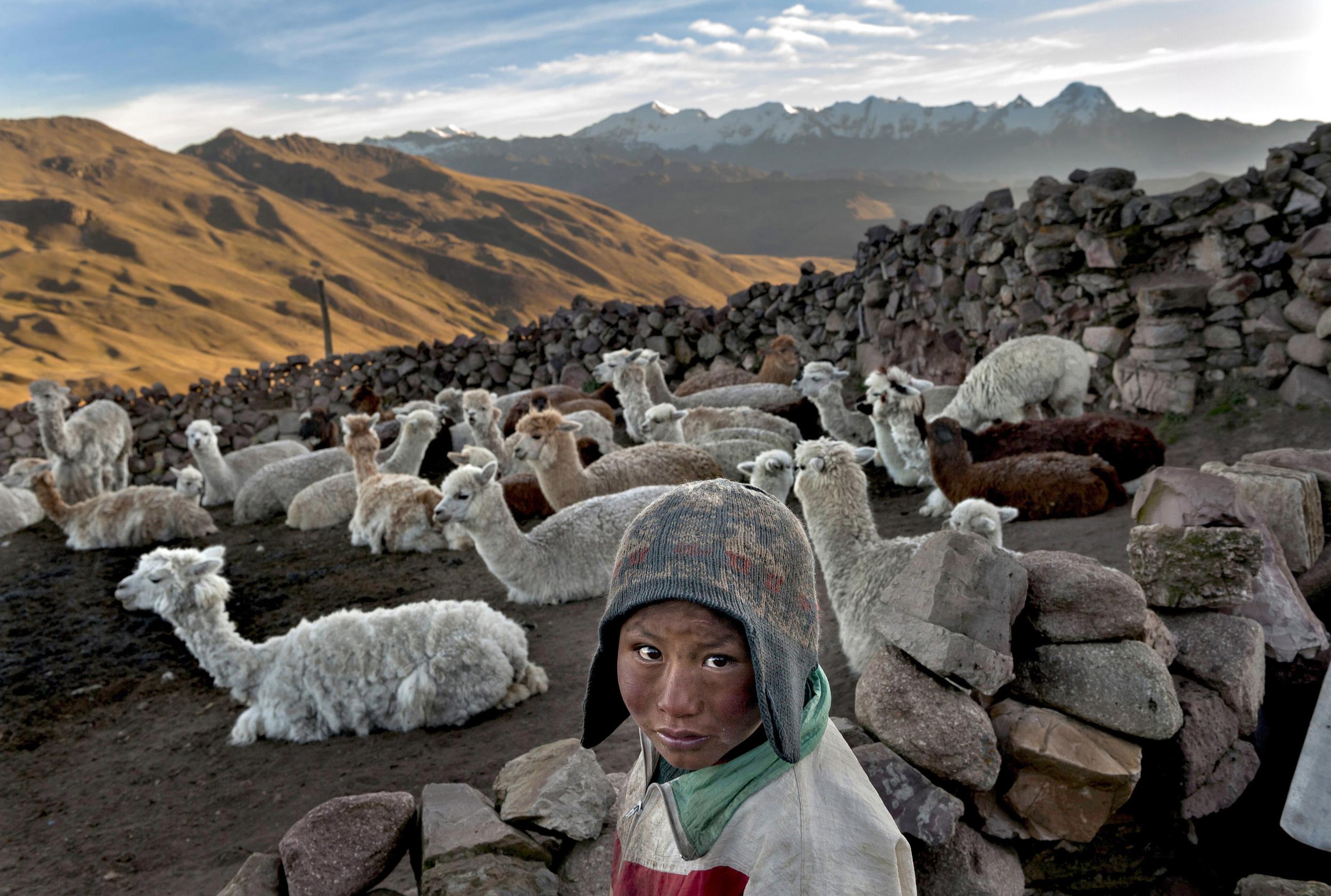 Child Herder in Bolivia © Renée C. Byer