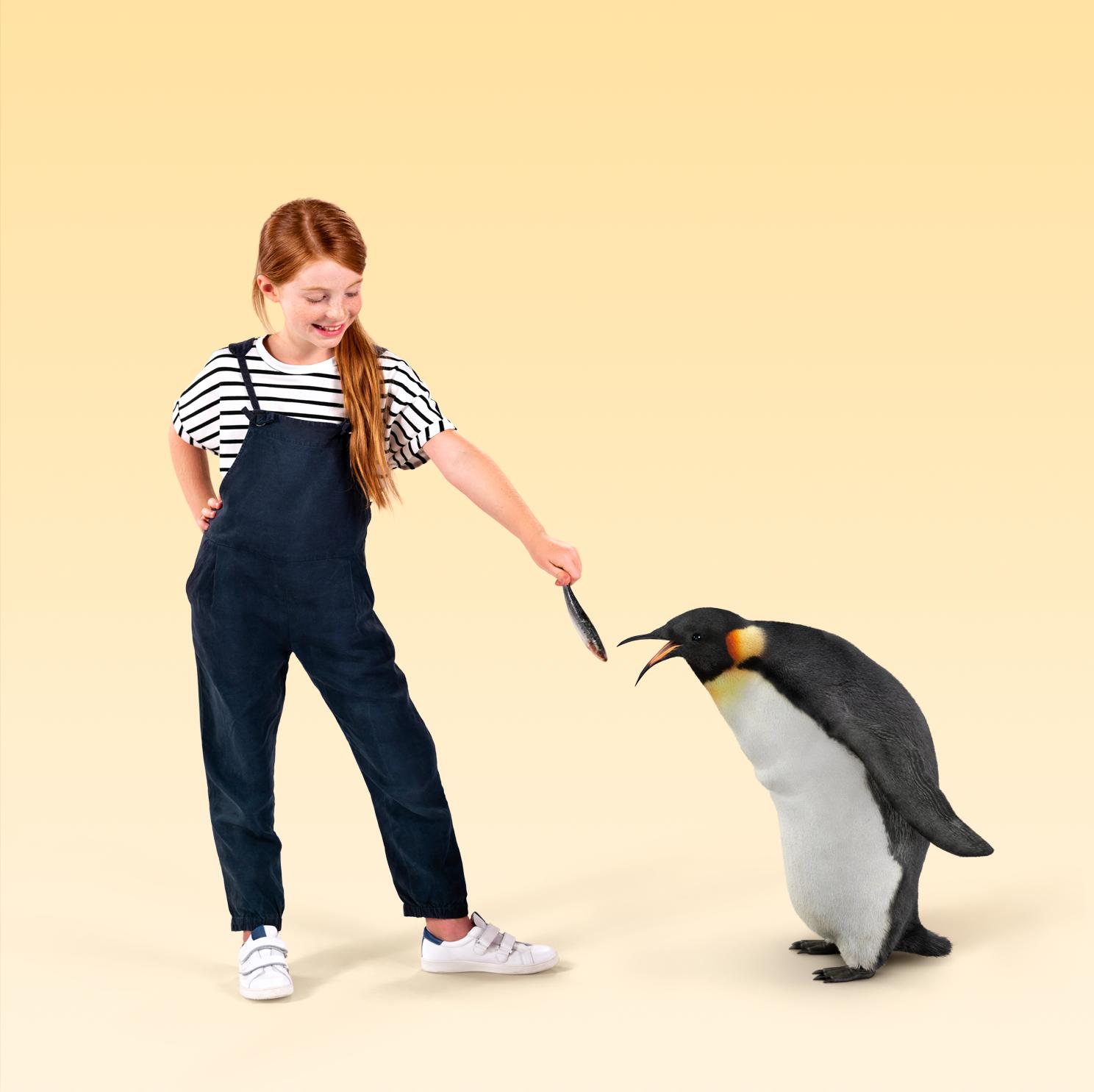 ENE_Najaar2018_Campagnebeeld_Pinguin-BG-LOWRES.png