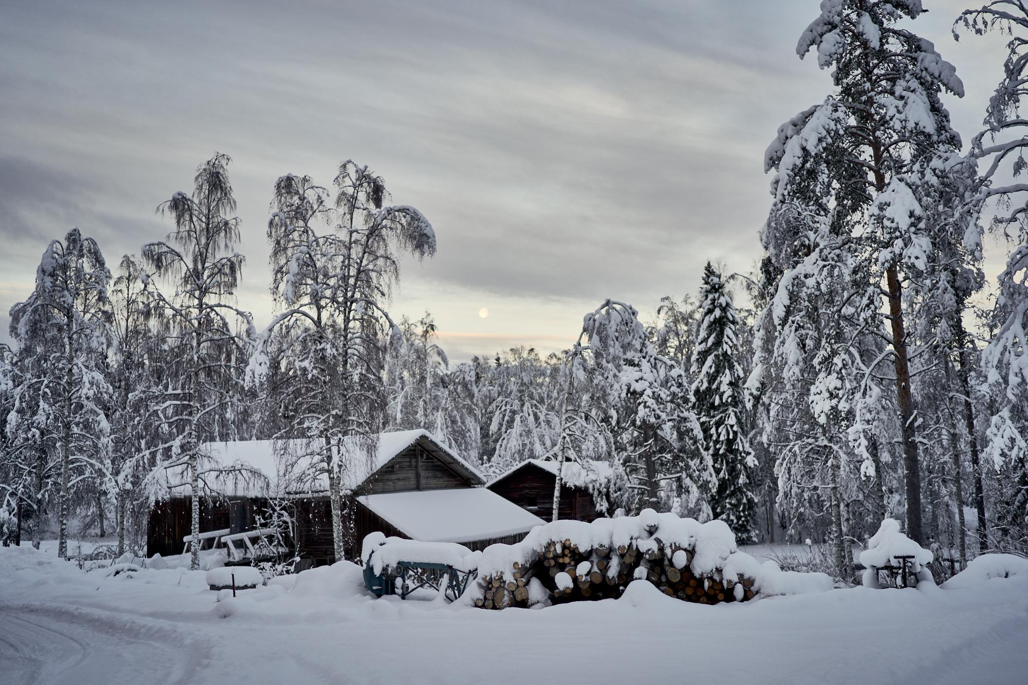 Zweden-2018-NIK01528.jpg