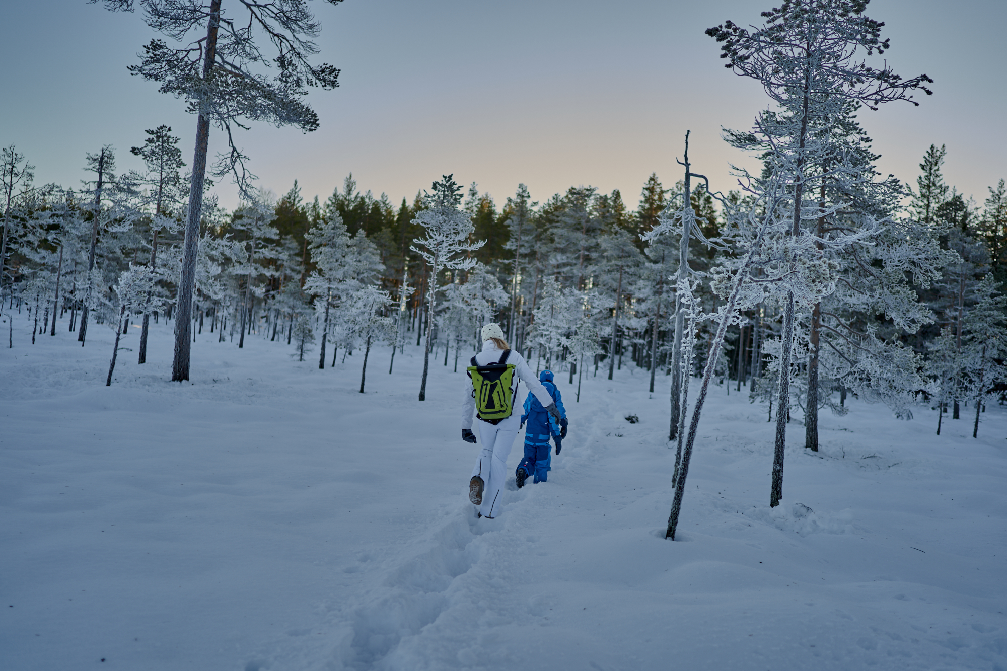 Zweden-2018-NIK01715.jpg