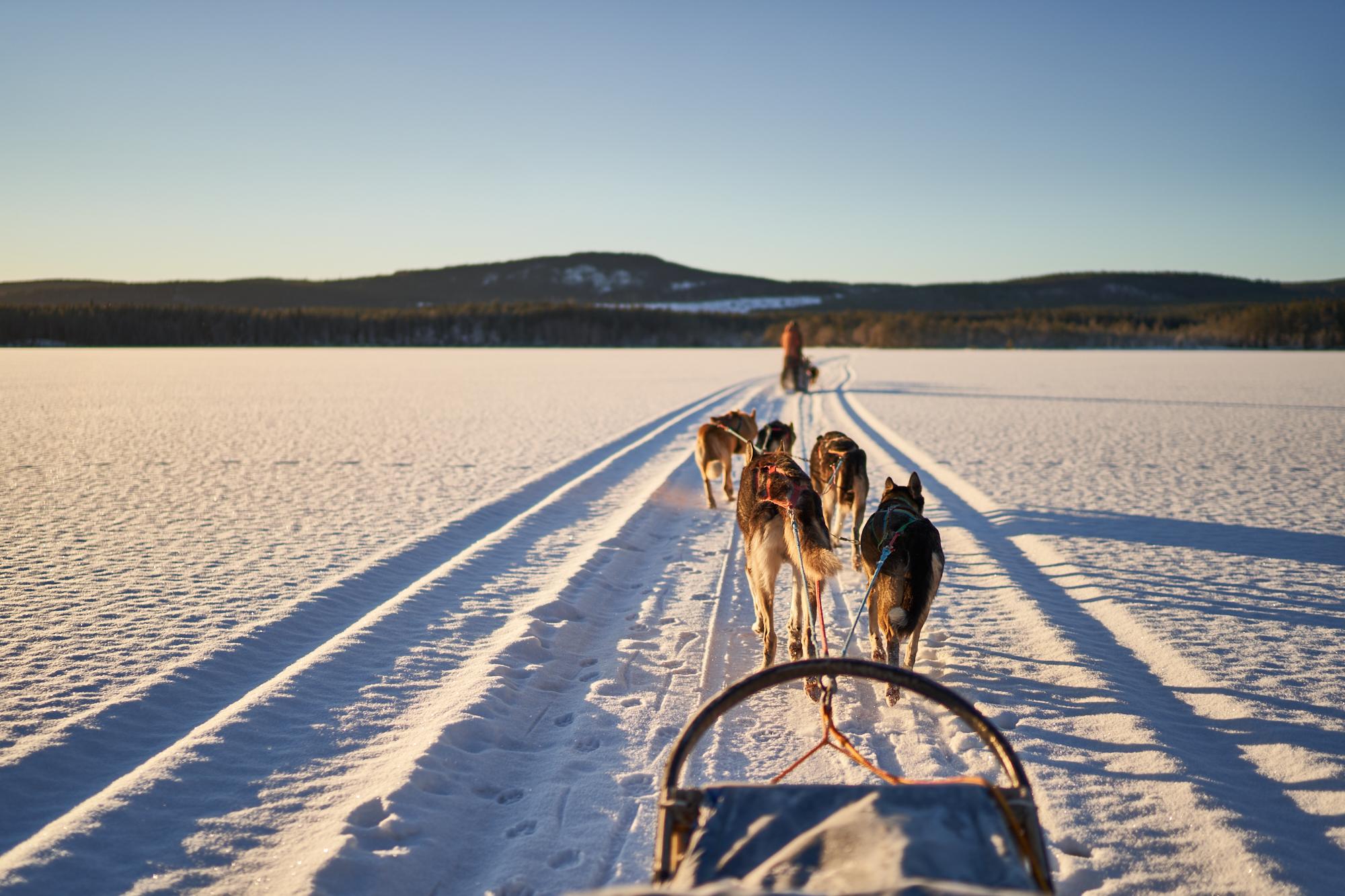 Zweden-2018-NIK01924.jpg