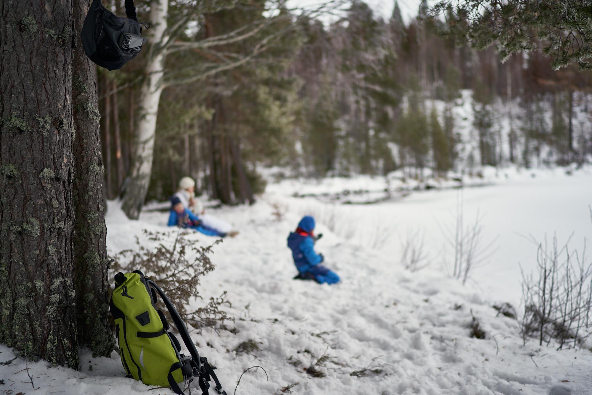Zweden-2018-NIK01677.jpg