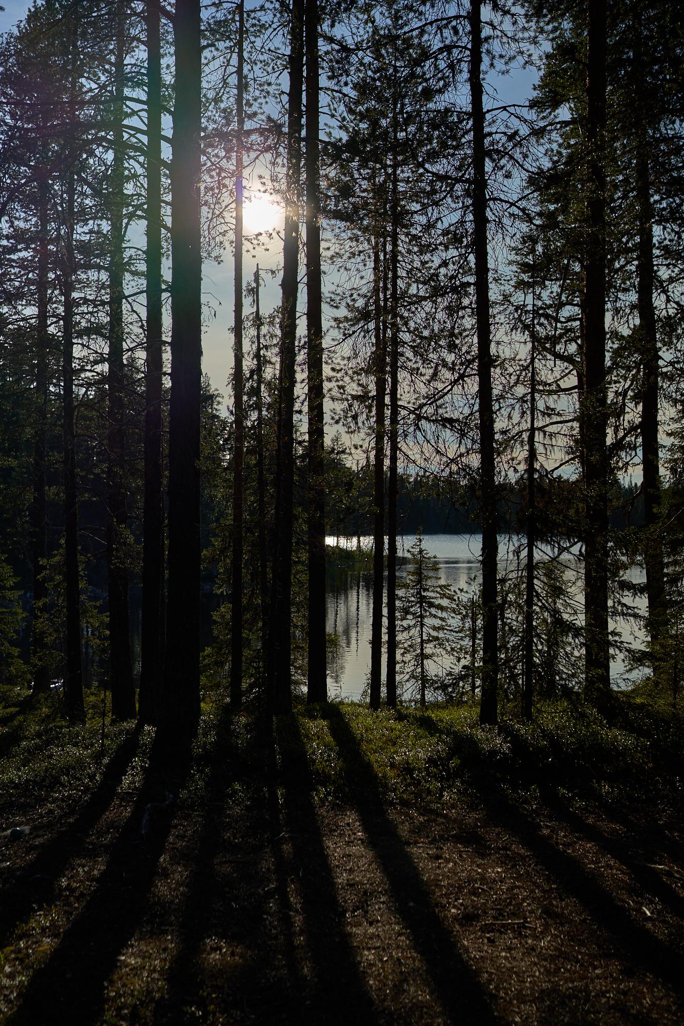 20190710-Zweden-S19-NIK08704.jpg