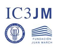 logo-ic3jm.jpg