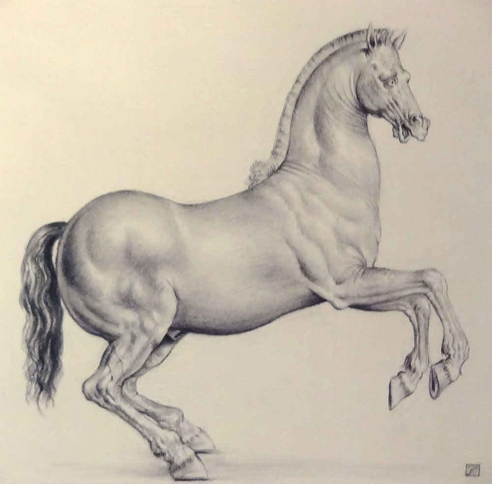"REARING HORSE ""HOMAGE TO ALESSANDRO ALLORI""  black chalk on laid paper, 12.5 x 12 in."