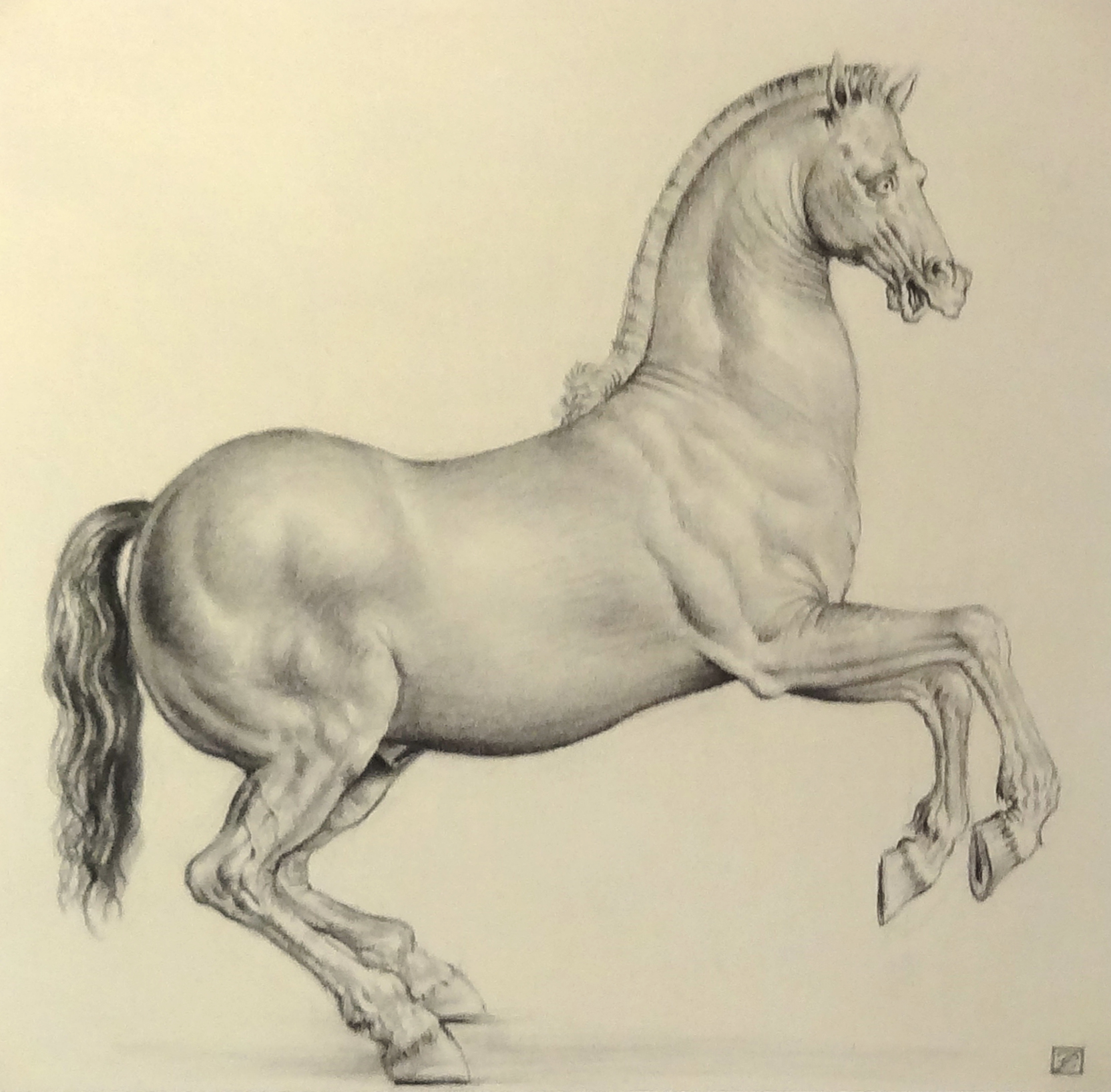 "#135 Rearing Horse, ""Homage to Alessandro Allori"" (12.5 x 12 in.).jpg"
