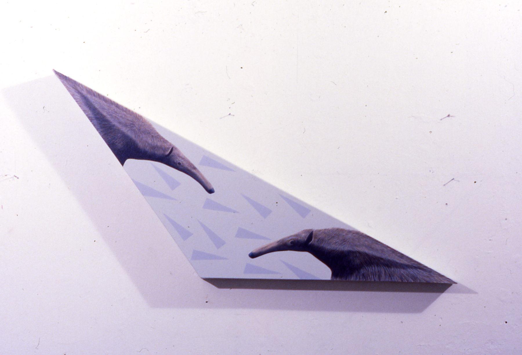 Flying anteater 1.jpg