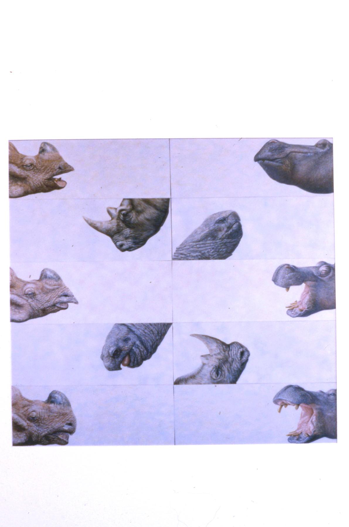 Brian Cesario  Egypt X  oil on canvas 10 panels 120x120.jpg