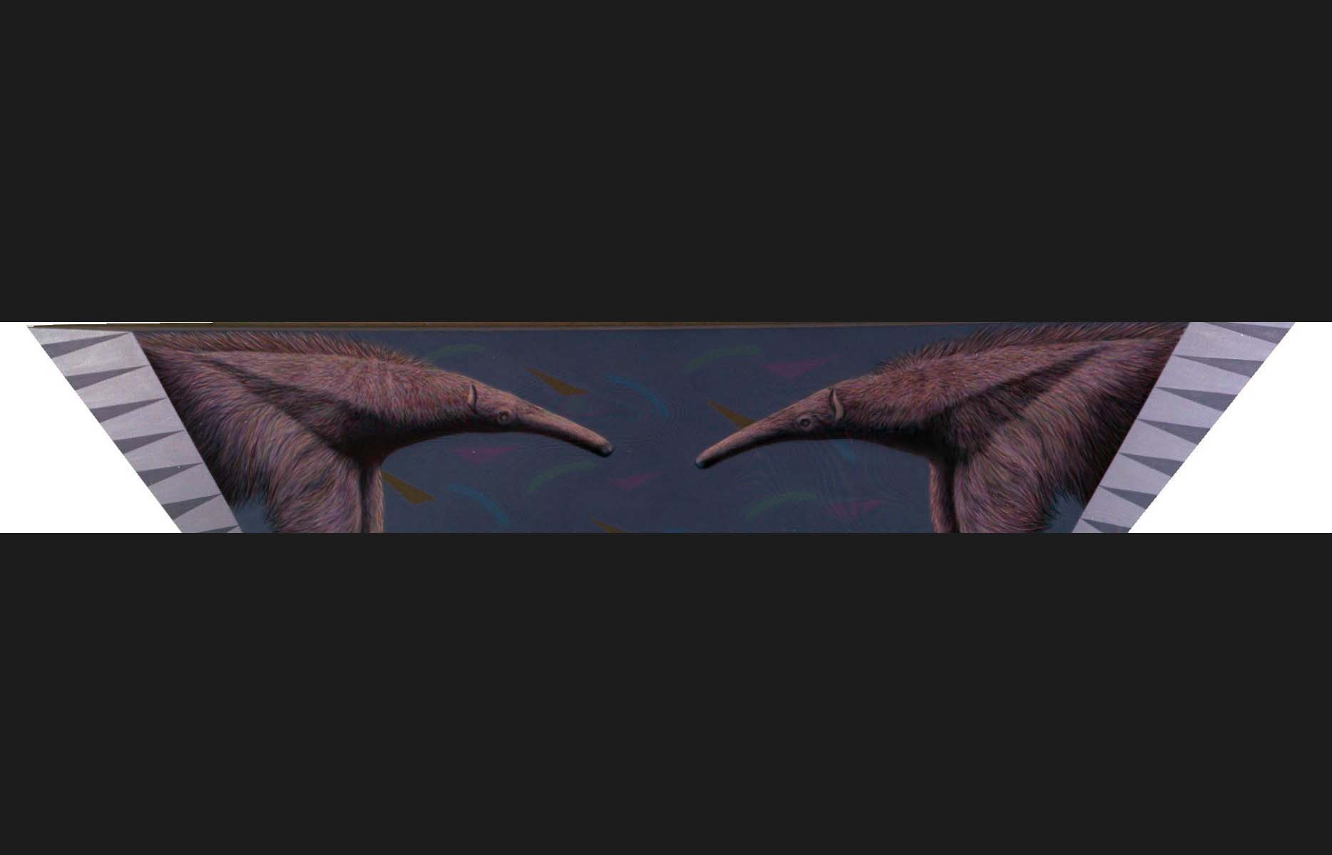 flying anteater #3.jpg