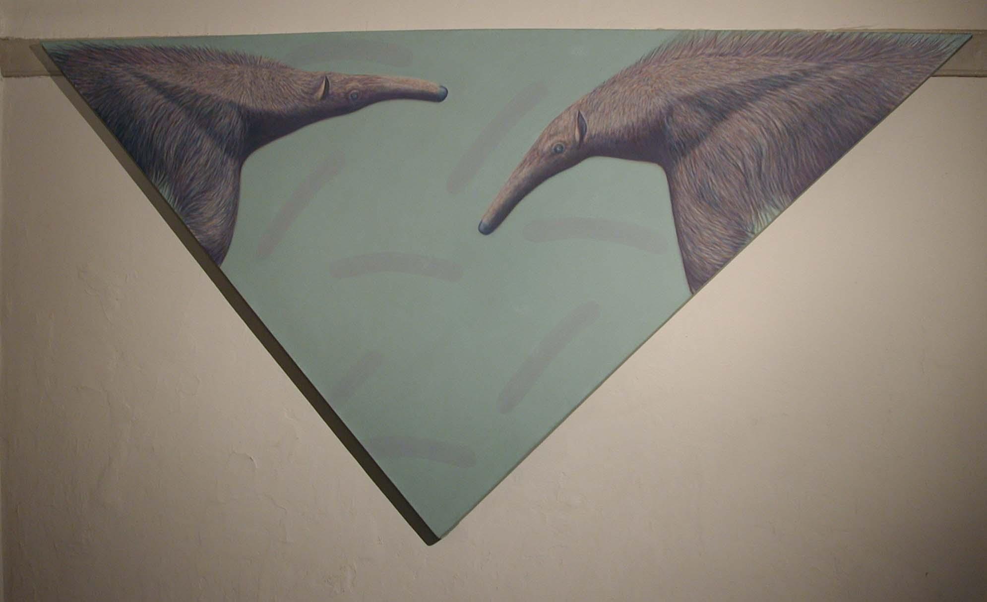 flying anteater 2.JPG
