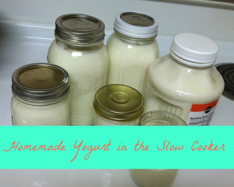 Homemade yogurt in the slow cooker.jpg