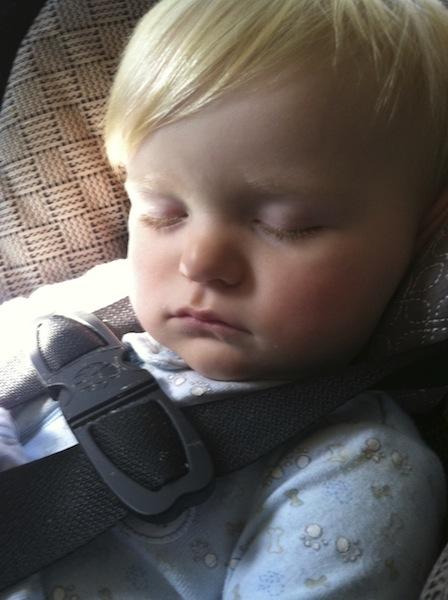 sleeping Ryals 1.jpg