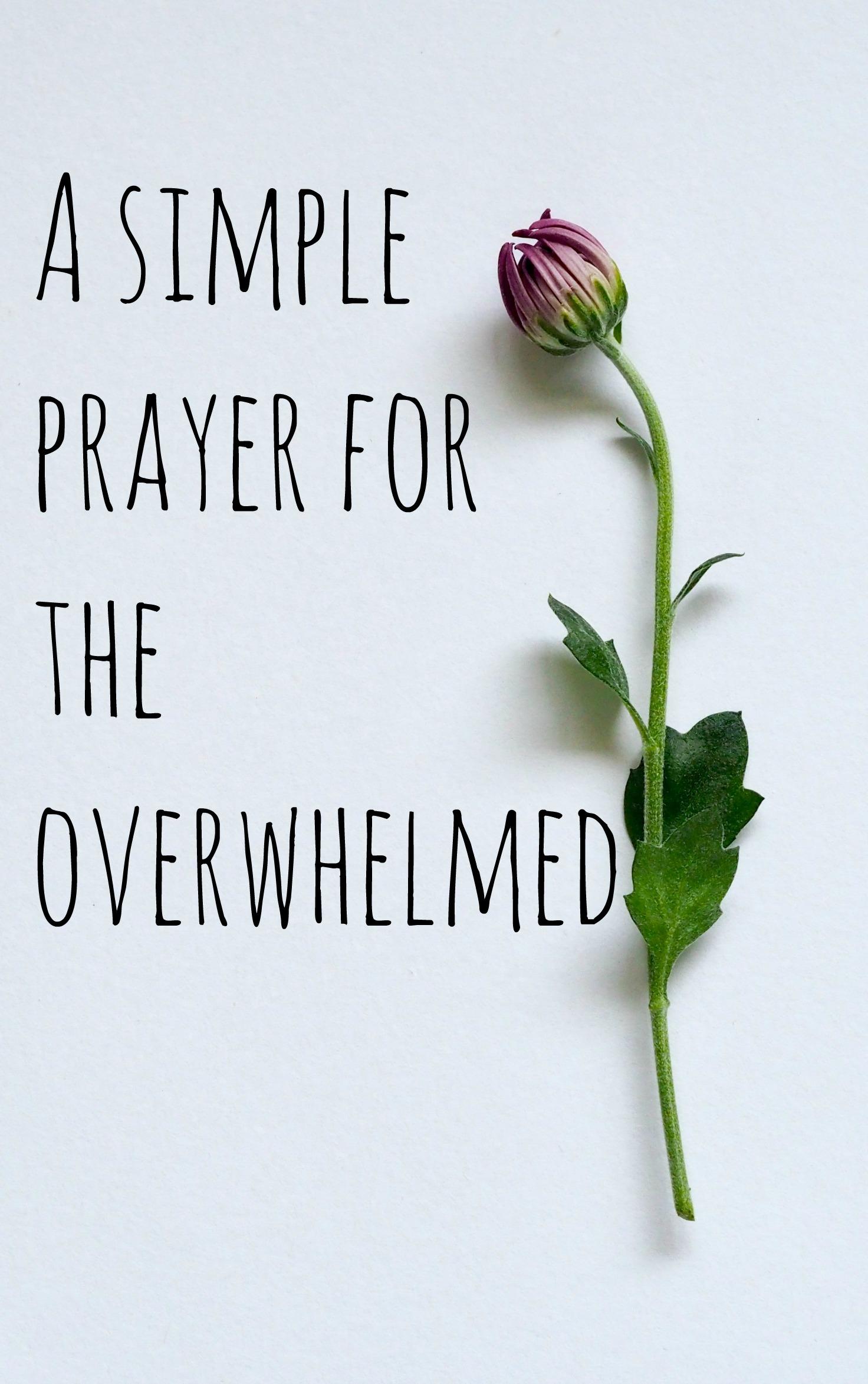 a simple prayer for the overwhelmed.jpg