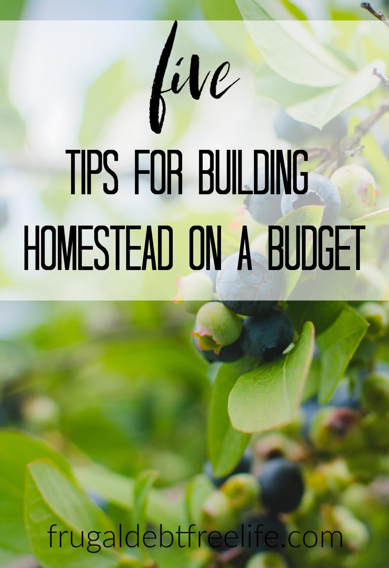 Save money building a homestead.jpg