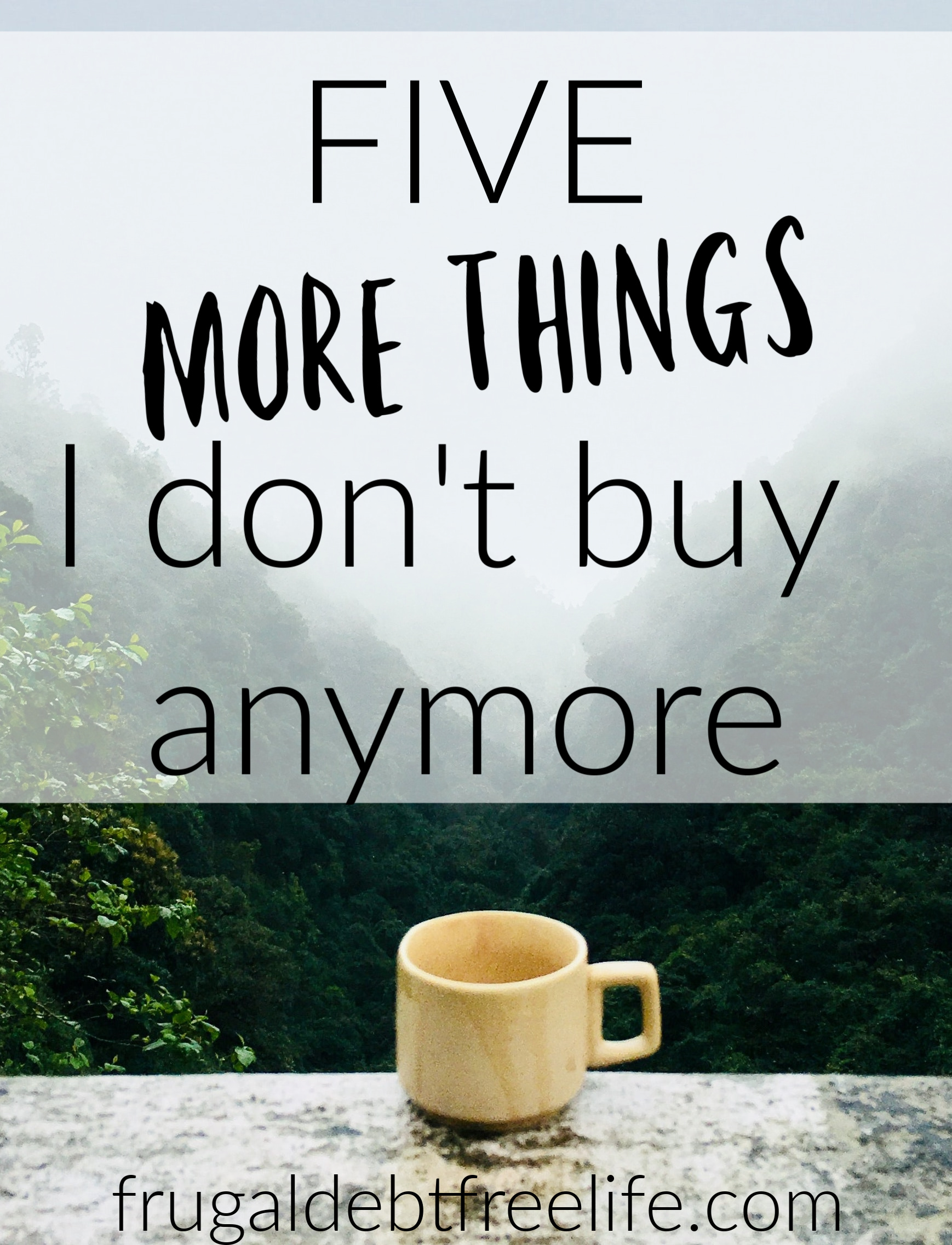 5 MORE things I don't buy! Our Frugal Debt Free Life.jpg
