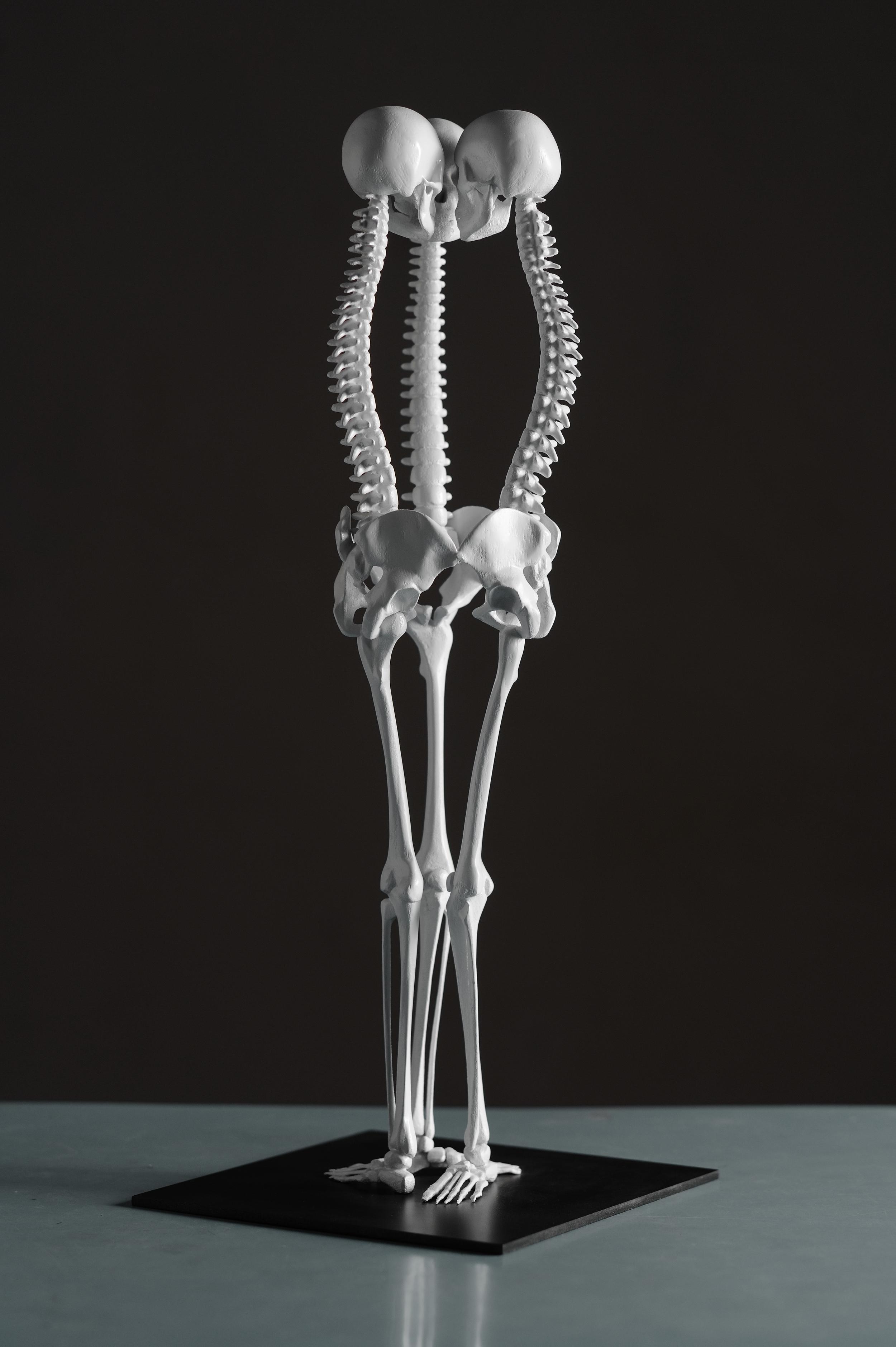 K1(Communication Cycle) , gypsum composite(3D project Digital Sculptures),2011 @Monika Horčicová / @Photo Ondřej Polák