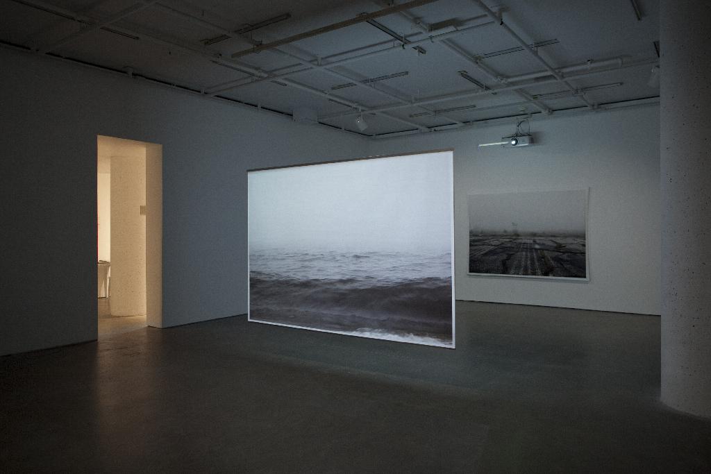 Mirari , documentation of the installation, Galerie de l'UQAM, Digital printing and HD video, 152 x 222 cm, 7 min, 2013 @Léna Mill-Reuillard