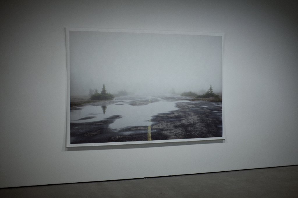 Mirari , (detail) documentation of the installation, Galerie de l'UQAM, Digital printing, 152 x 222 cm, 2013 @Léna Mill-Reuillard
