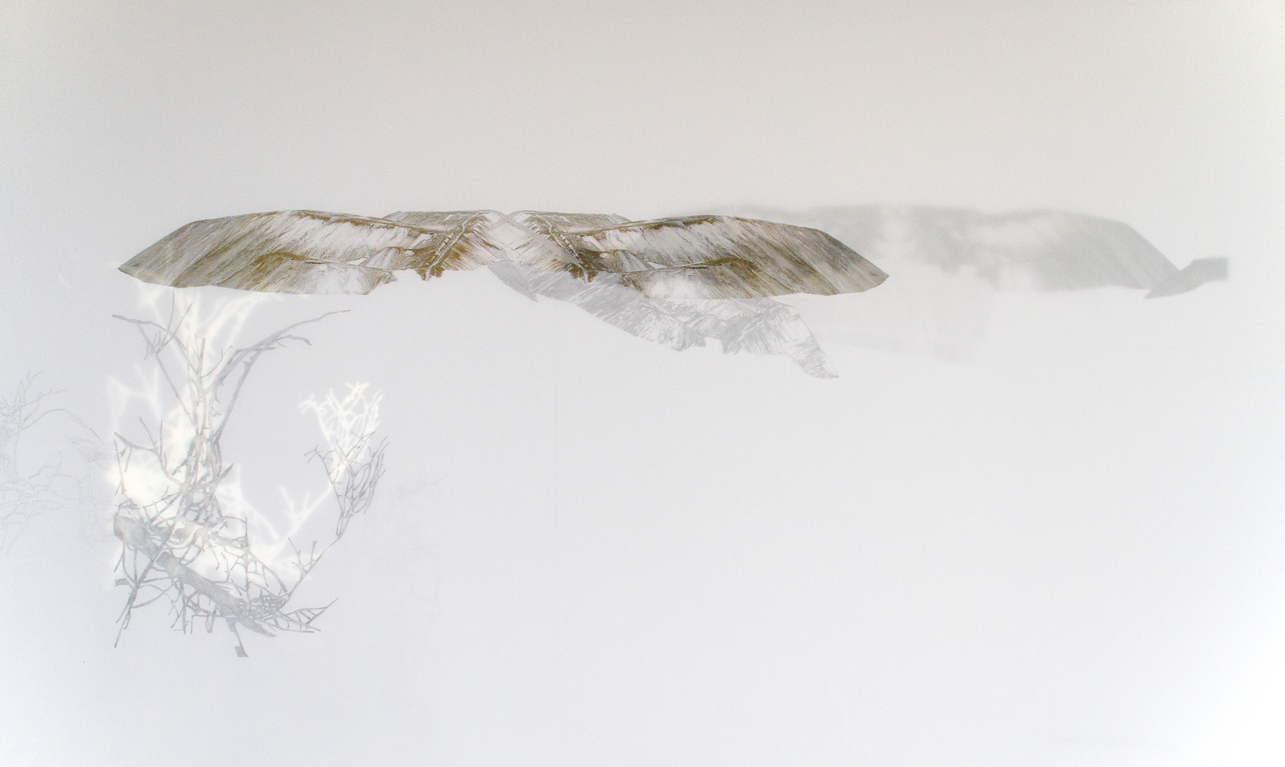 Halde 1 ,Digital printing, graphite and acrylic paint on 2 fold sheets of Mylar paper,82 cm x 62 cm,2012 @Cara Déry  Photo by Jean-Michael Seminaro