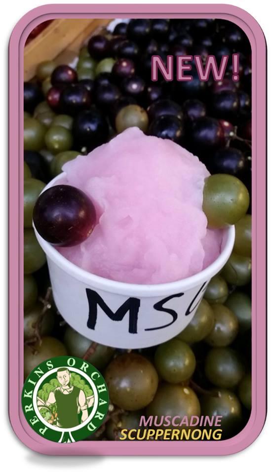 grape sorbet.jpg