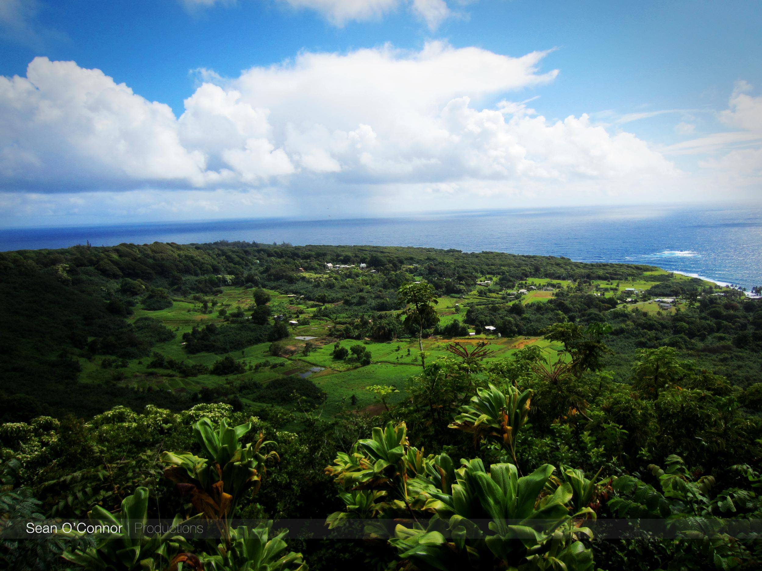 HawaiiGreen.jpg