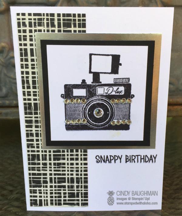Snappy Birthday card -www.stampedwithaloha.com