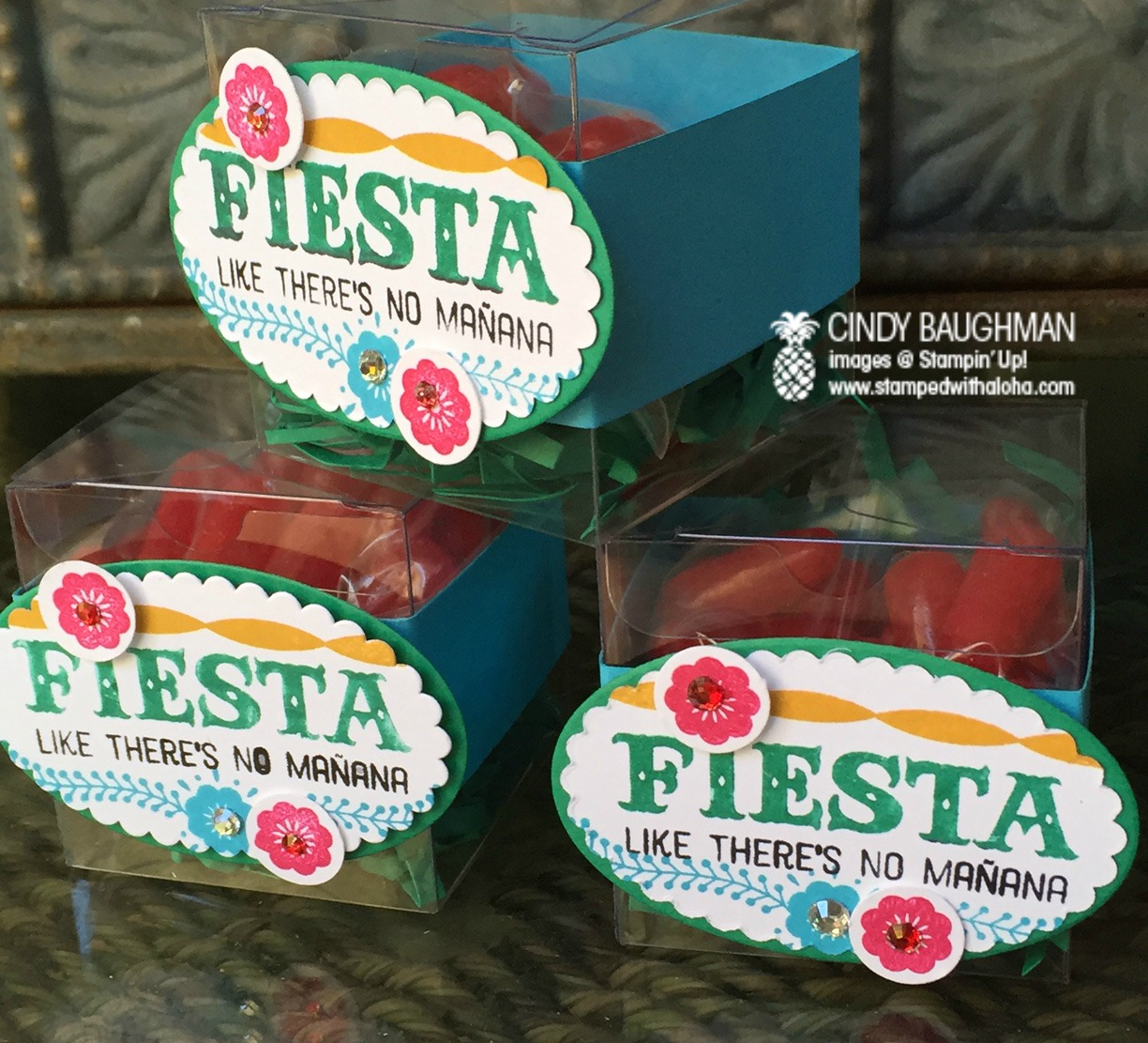 Fiesta Party Favor Boxes - www.stampedwithaloha.com