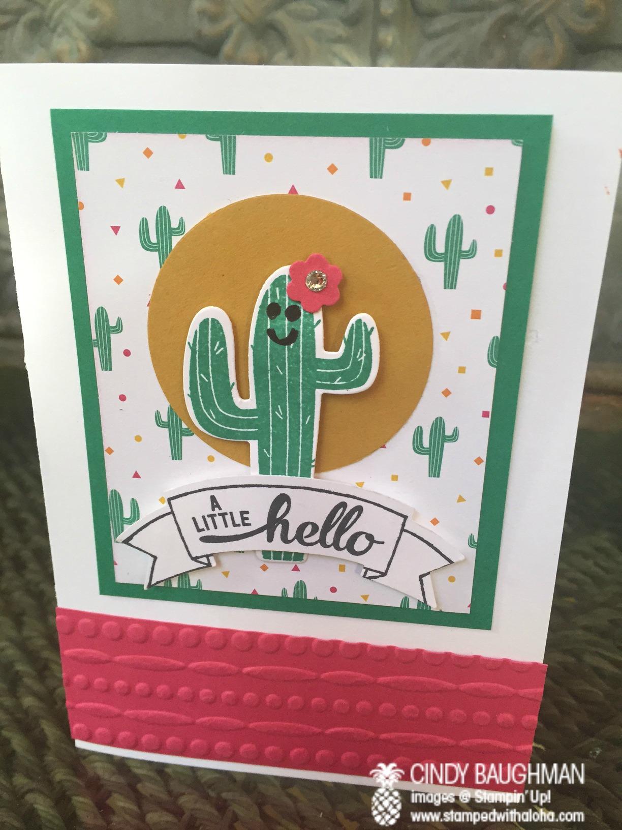 Birthday Fiesta Happy Cactus Card - www.stampedwithaloha.com