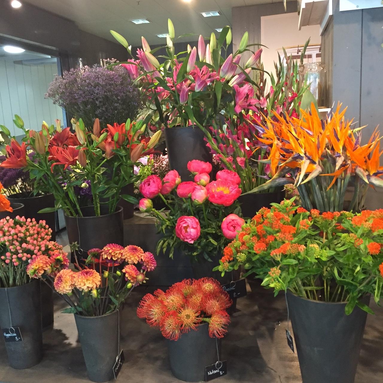 Fleuriot Fluers at the Geneva Airport, Switzerland - www.stampedwithaloha.com