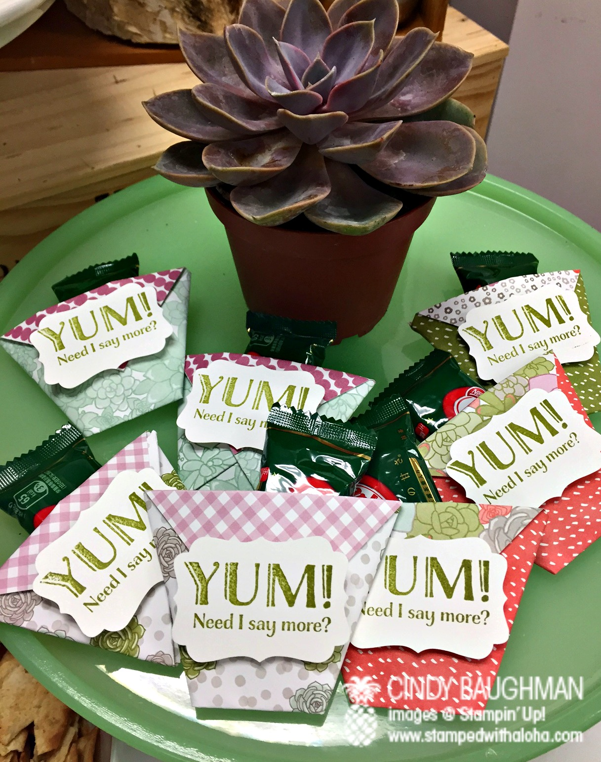 Pam's Succulent Favors - www.stampedwithaloha.com