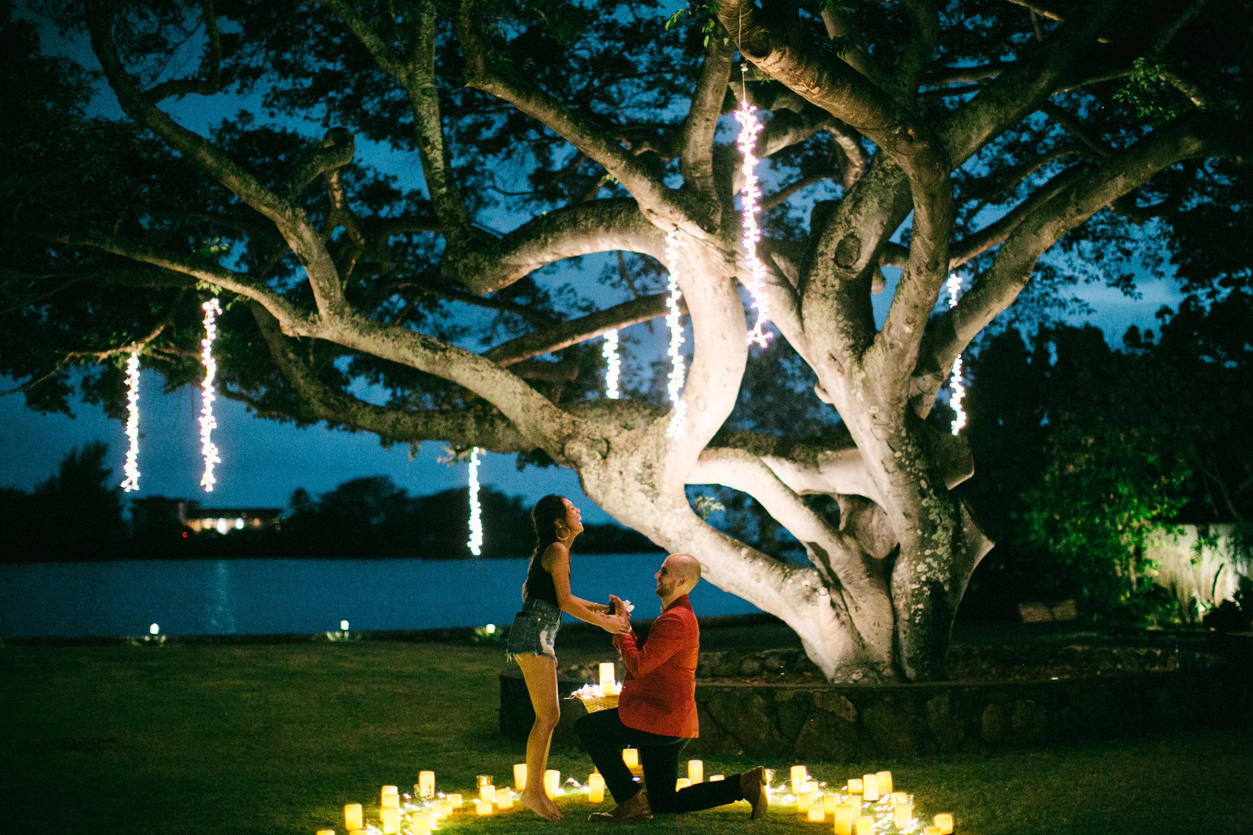 Kalani proposes to Joyce
