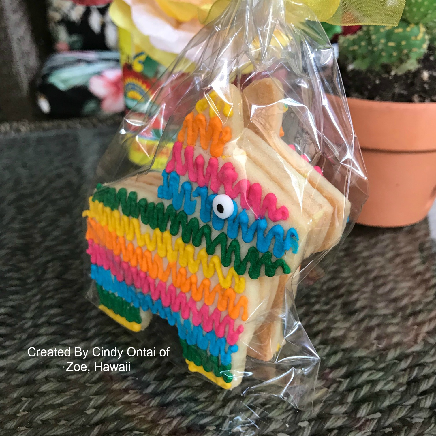 Pinion Cookies by Zoe Hawaii
