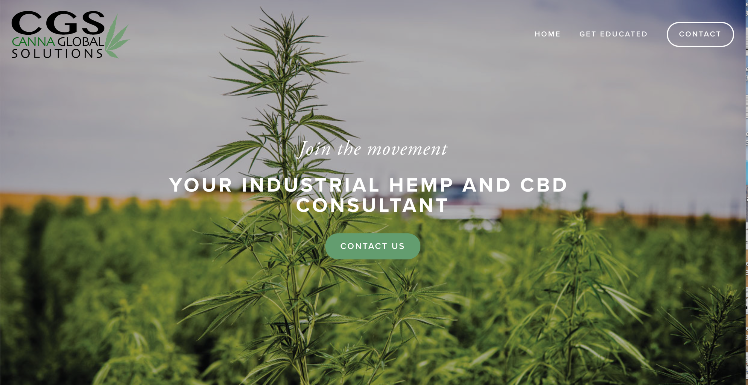 CANNA GLOBAL SOLUTIONS | CBD, HEMP CONSULTANT   Website design, logo and business card design