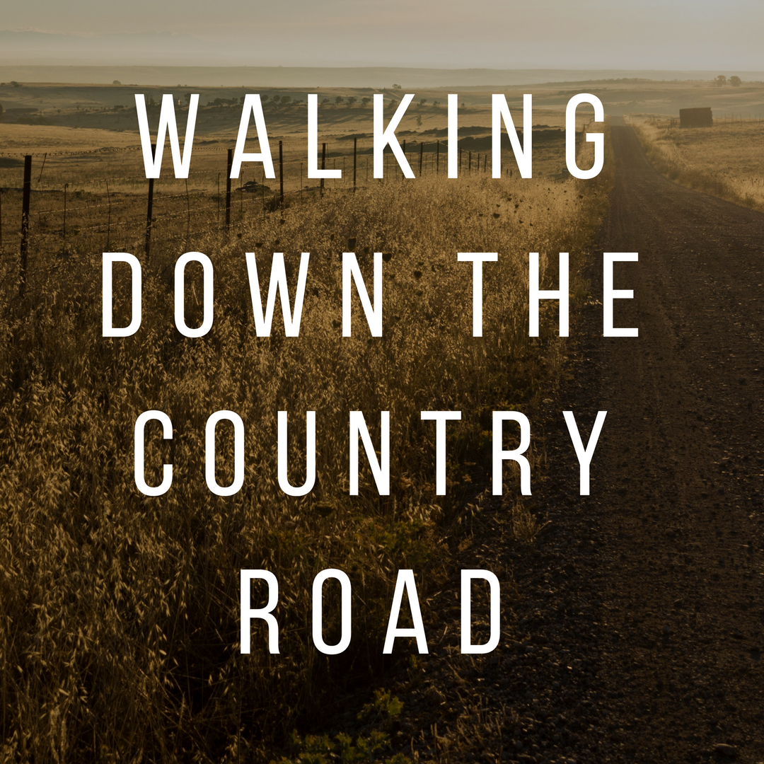 Copy of Walking Down The Country Road