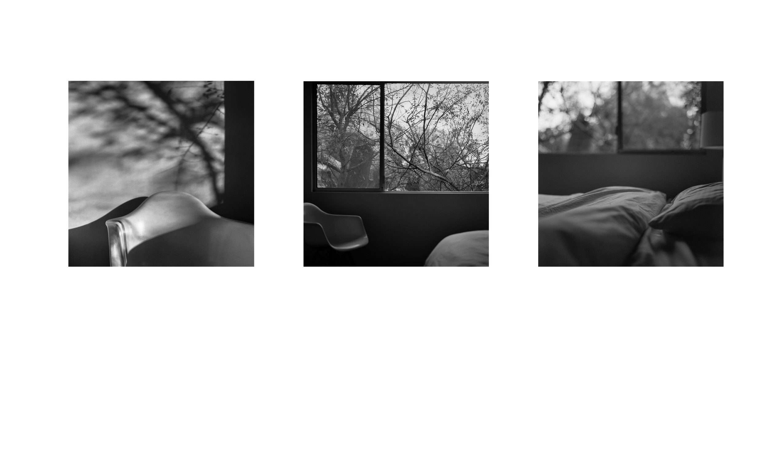 Three images.  Three stories.  One subject: light.