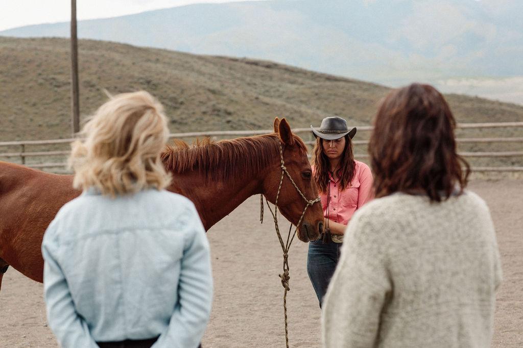 Equine Personal Development workshops in Gibsons, British Columbia.