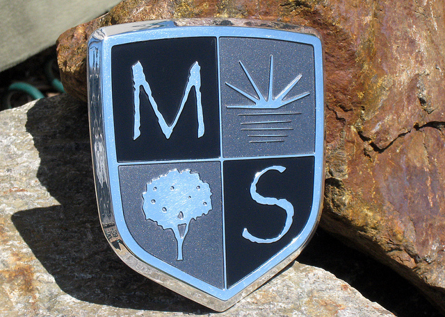 MS Landscape