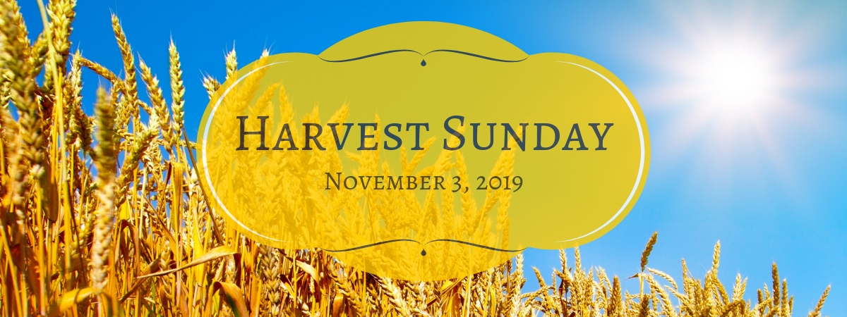 Harvest Sunday 2019.jpg