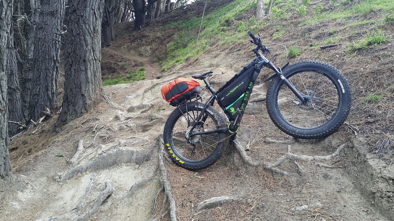 Mt Vic enduro trail. Every thing still there.