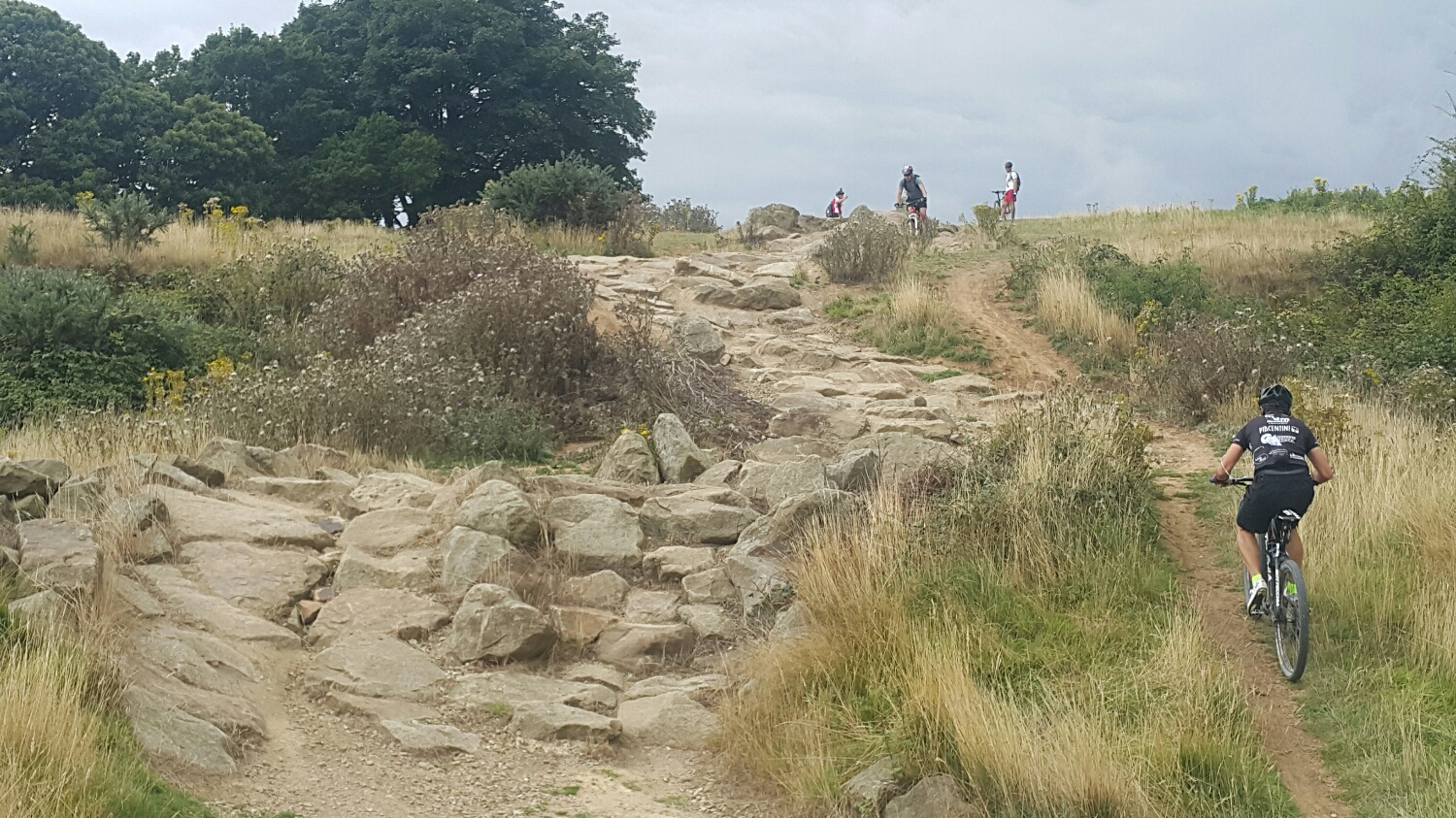 This is the rock garden. One of the man made sections.