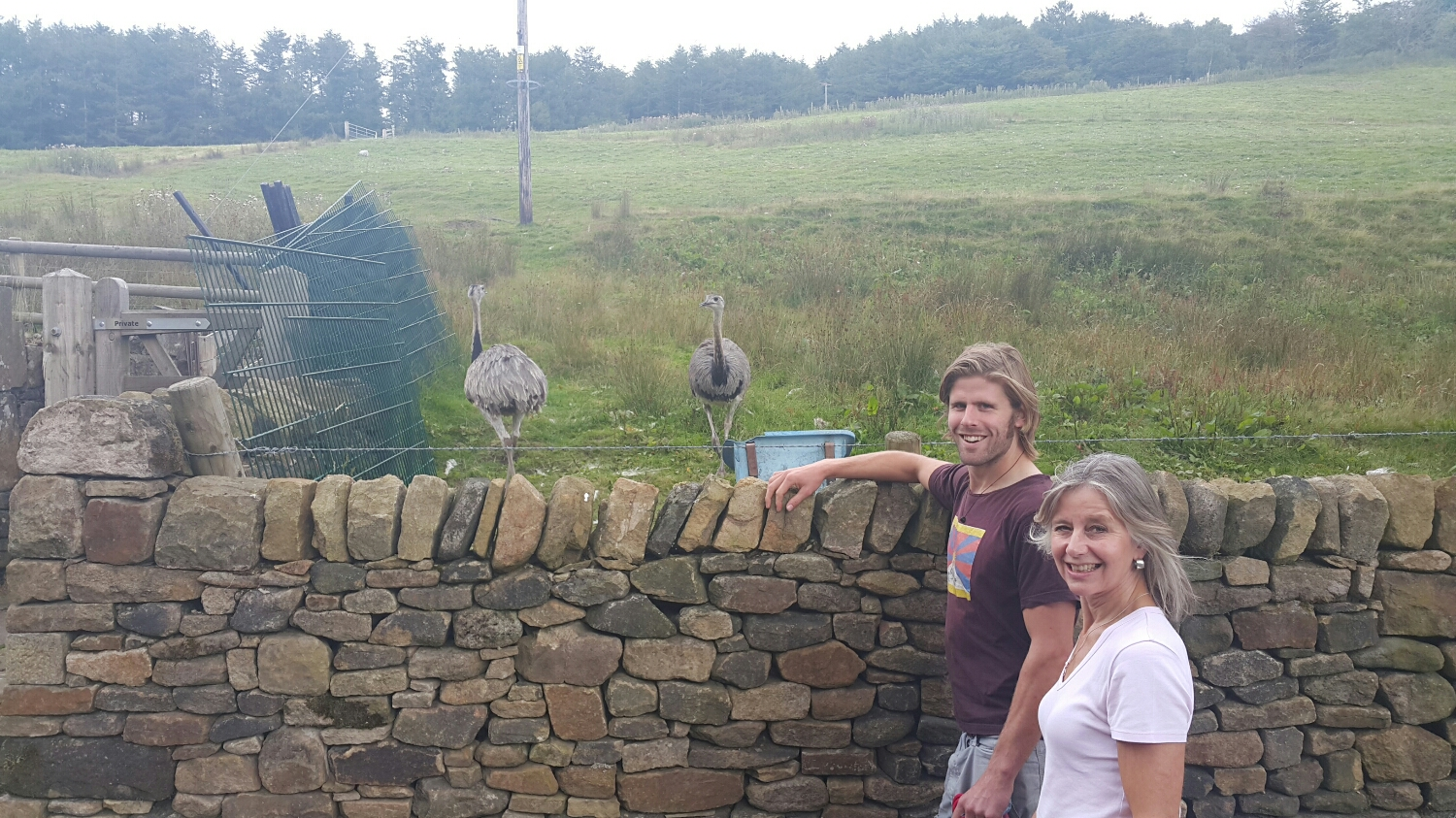 Pete and his mum Paul with some local wildlife. I think these birds are imports!