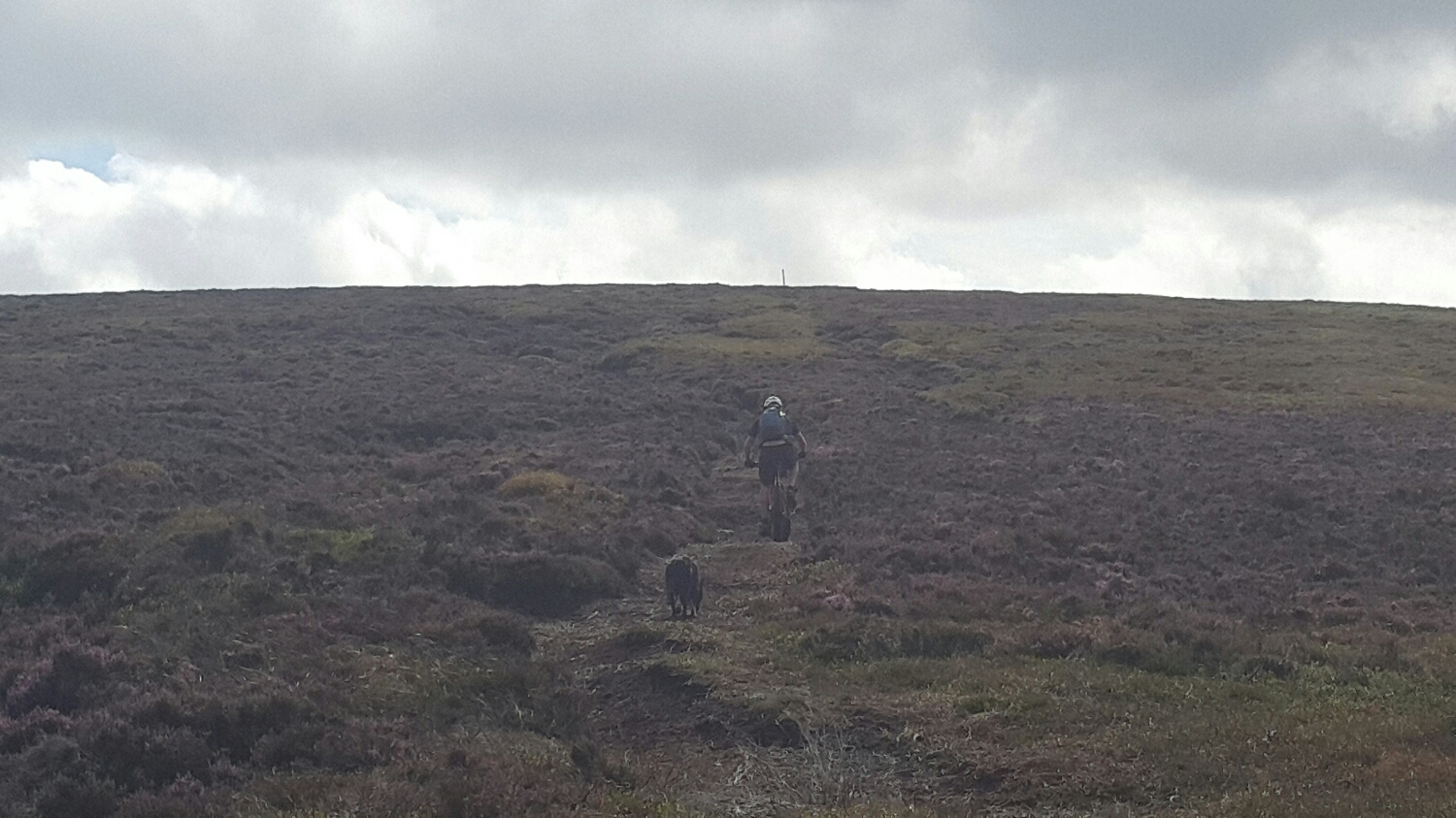 The trail is just a walking track that has worn through the heather exposing the peat.  Boggy in places. A nice steady gradient but slow due to the soft ground .